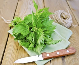 Nettle with napkin and twine on board