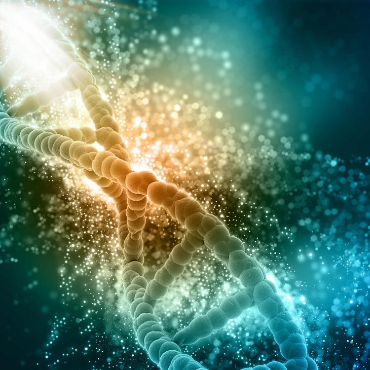 Kreft starter med en endring av DNA. Hva utløser endringen, og hva motvirker den?